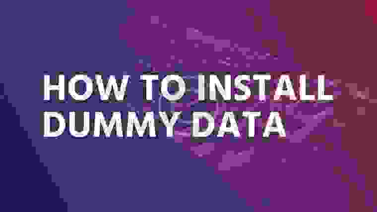 How to install dummy data